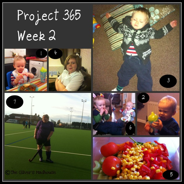 Project 365 wk 2