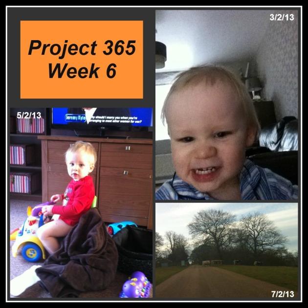 Project 365 week 6